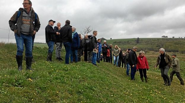 På gåturen fik lokale lodsejere, interesseorganisationer, repræsentanter fra Mariagerfjord Kommune og styregruppen bag projektet Collective Impact lejlighed til at udveksle synspunkter.