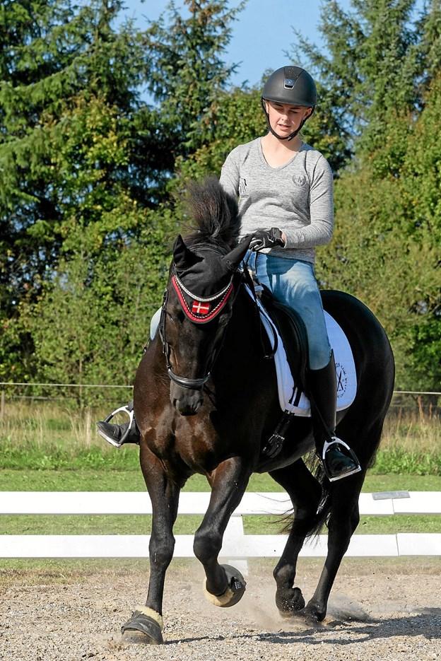 Josephine Olivia Frandsen er ?16 år og rider på Holmens ?Juulius, der er en 8 år gammel kategori 1 pony. ?Foto: Niels Helver