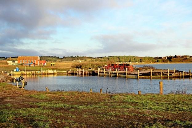 Selvom det er vinter og kold er der bestemt smukt i naturen omkring Oddesund. Her et kik over hvor løberne passerede. Foto: Hans B. Henriksen Hans B. Henriksen