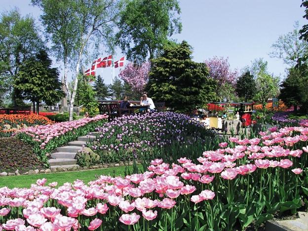 Der er blandt andet en tur til Jesperhus Blomsterpark på programmet. Arkivfoto