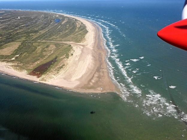 Vandflyveren kommer også til at flyve rundture over Skagen.