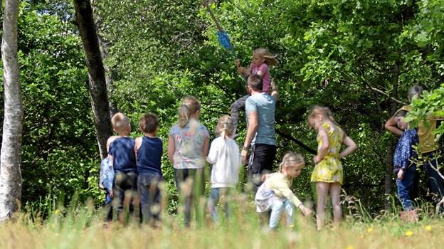 Forælder Rasmus Skaun Hoffmann skabte kø ved rebet i træet, da han uddelte høje skub. Foto: Jasmin Linnemann Munk