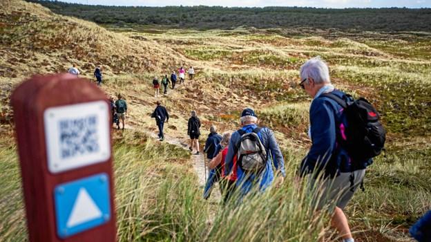 I Schweiz og Norge findes en samlet platform, der formidler ruter til vandring, kanosejlads, cykling og overnatning. Her er også mere standardiseret kortmateriale og formidling af natur og oplevelser undervejs. Foto: Adam Grønne/Friluftsrådet