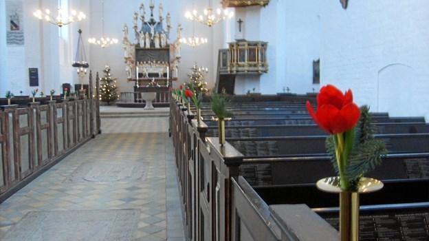 Klosterkor og organist optræder ved julekoncerten 5. december i Mariager Kirke. Privatfoto