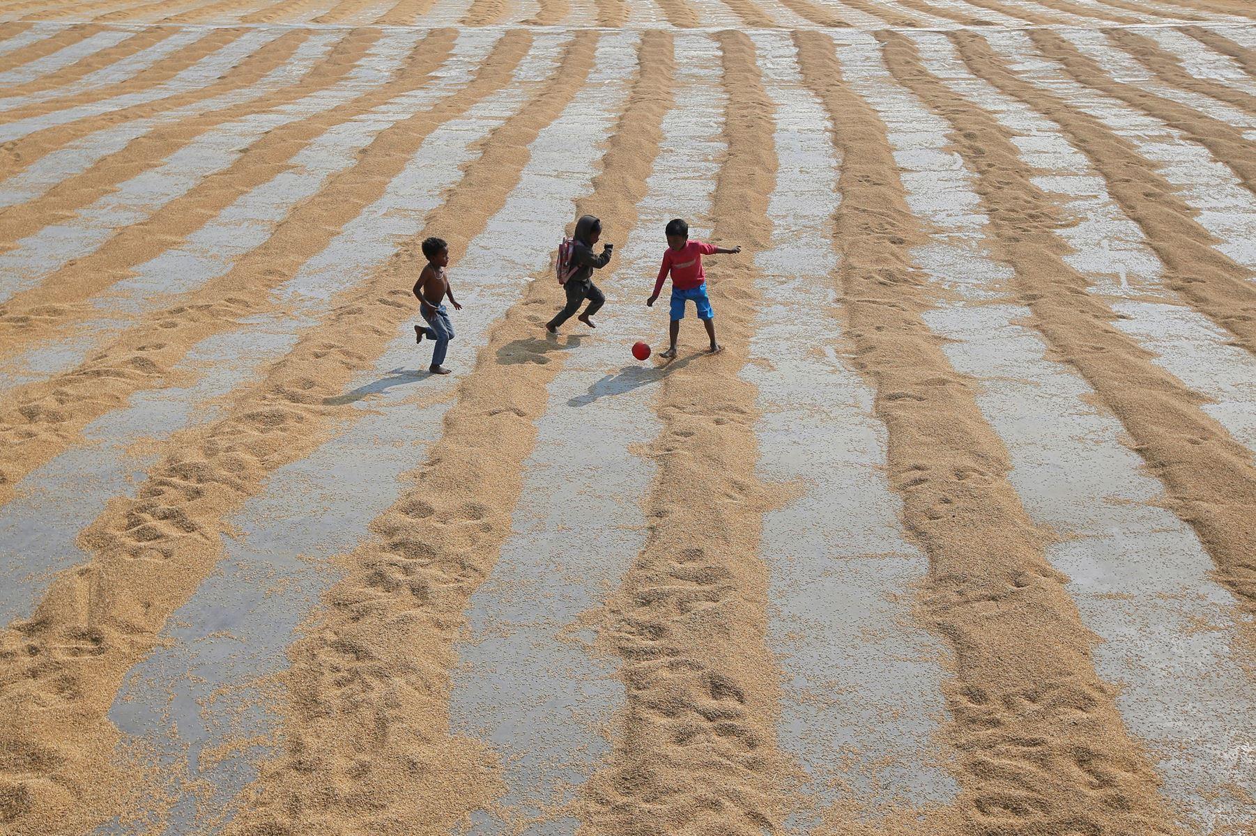 Etbarnspolitik i Indien og flere lande i Afrika ville kunne hjælpe på verdens klimaproblemer, mener forskere.