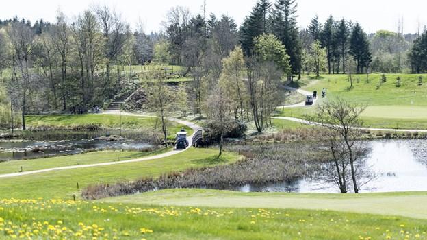 Sindal Golfklub har en flot og til tider krævende bane     Foto: Kim Dahl Hansen