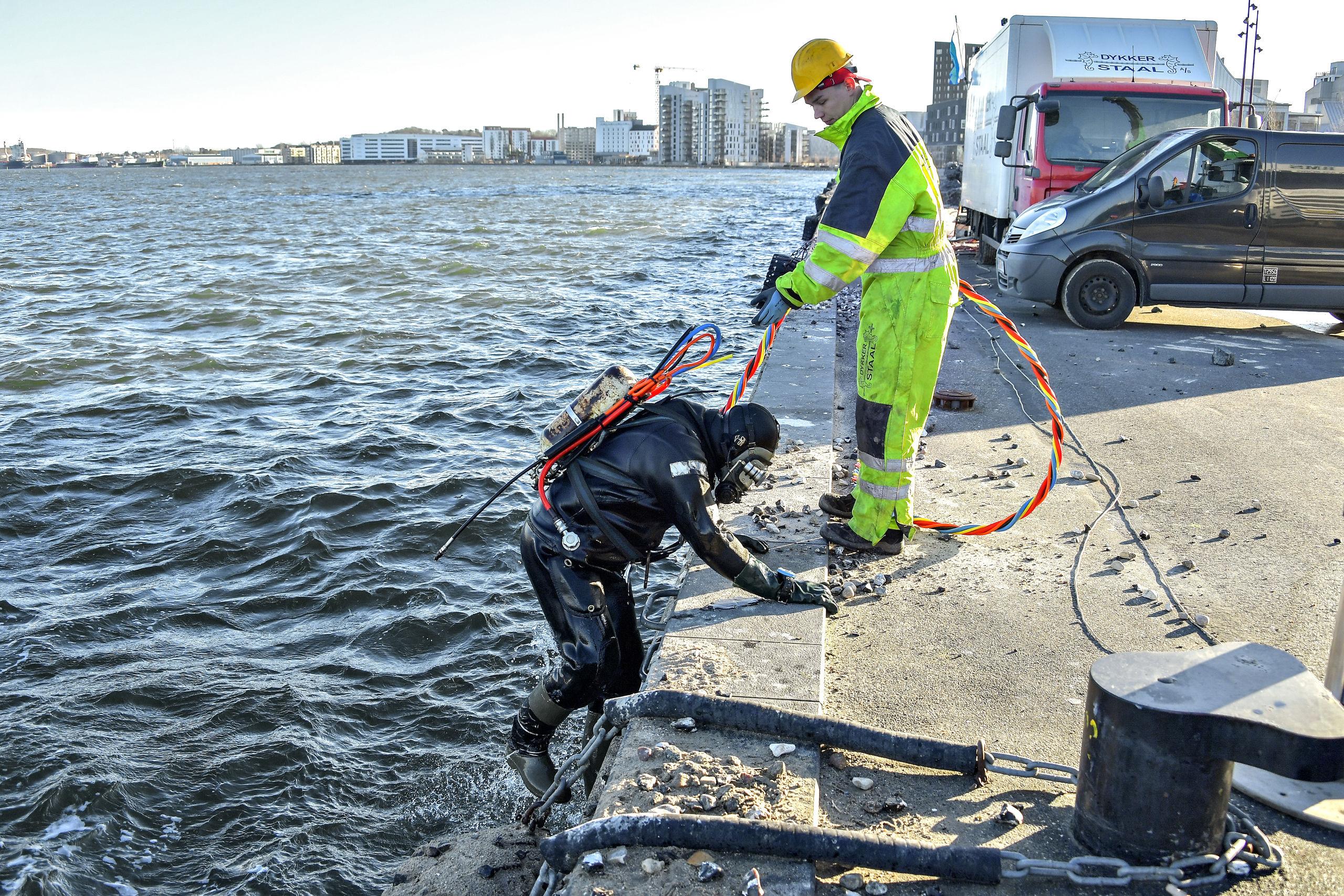 Dykker Sonny Rasmussen har nu taget sin tørn på bunden af Limfjorden, og han får her hjælp til at komme op på kajkanten igen af lineholder Jon G. Andersen. Foto: Claus Søndberg