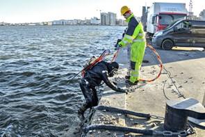 Professionelle vandhunde er på mission possible på bunden af Limfjorden