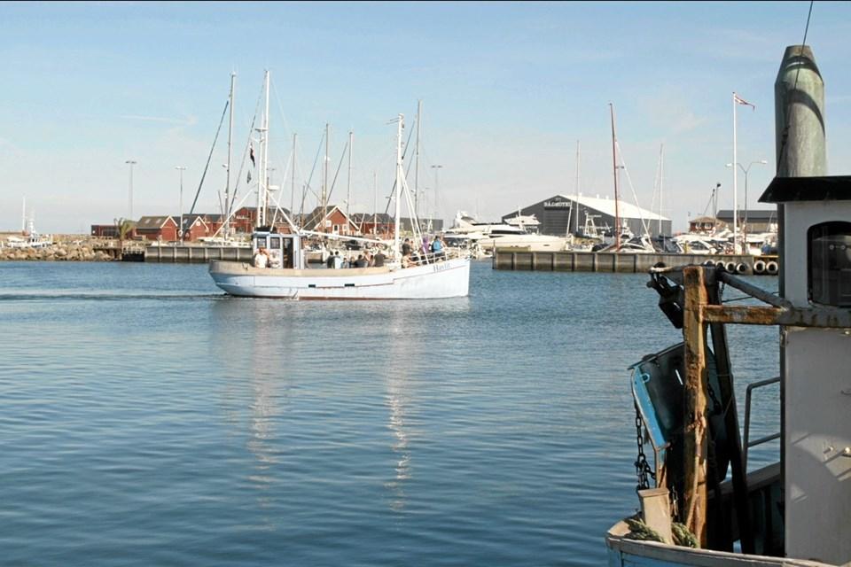 Det er gratis at komme på sejltur med fiskekutteren, som giver en rundvisning af havnen og sejler ud, så man kan se havnen fra søsiden. Foto: My Hyttel My Hyttel
