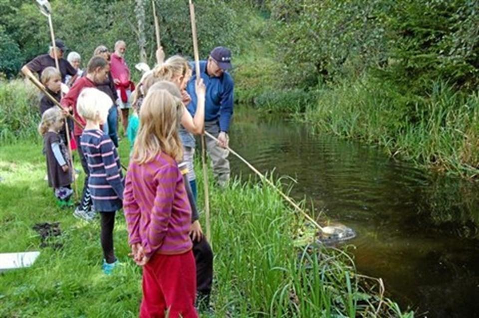 Især børnene var meget optaget af de mange spændende forekomster i åløbet. Privatfoto