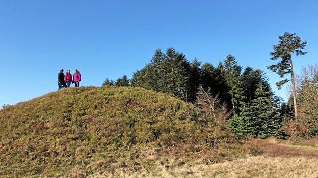 Her ses glimt fra pilgrimsvandringens rute, da gruppen bag prøvegik den i april.  Privatfoto