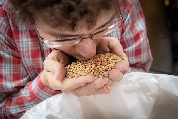 Dufter chokolade hvedemalt, som den skal. Det tjekker Tom Schafferhans. Foto: Henrik Bo