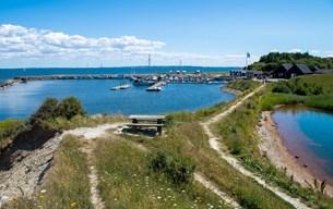 """""""Jørsby Festival"""" bliver til """"Ejerslev Dreaming"""": Kulturfestival opstår i smuk natur"""