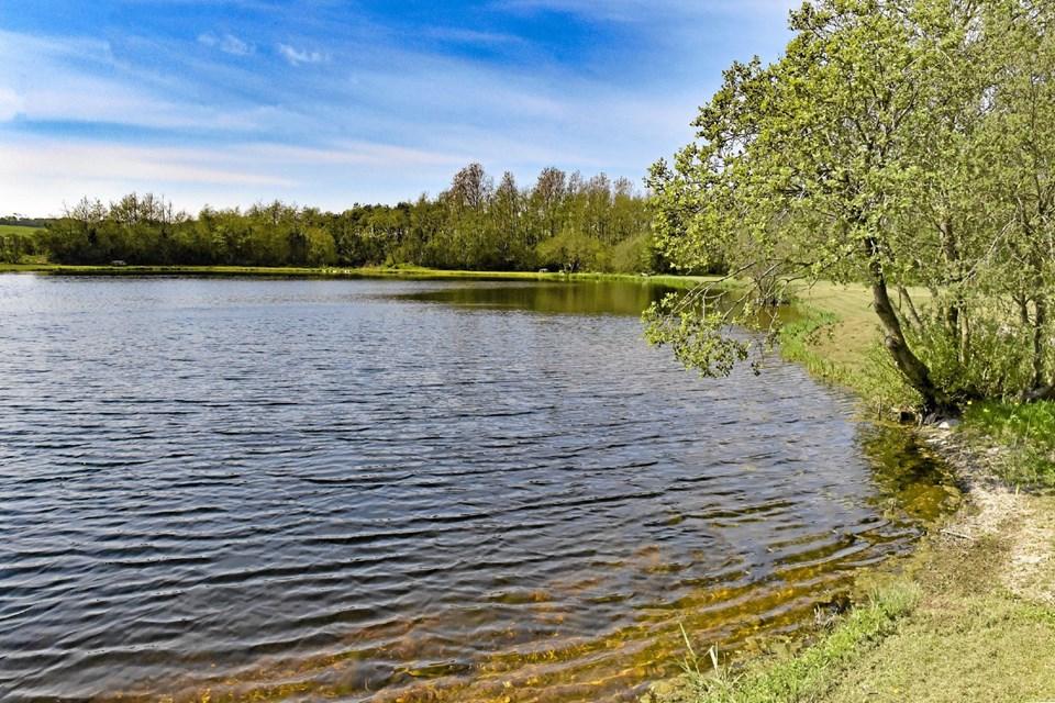 Den dybe og klare sø er nu en del af st større naturområde på 30 hektar ved Villerslev/ Hassing. Foto: Ole Iversen Ole Iversen