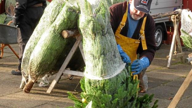 Træerne befries for nettet, så kunderne kan vælge det helt rette træ.