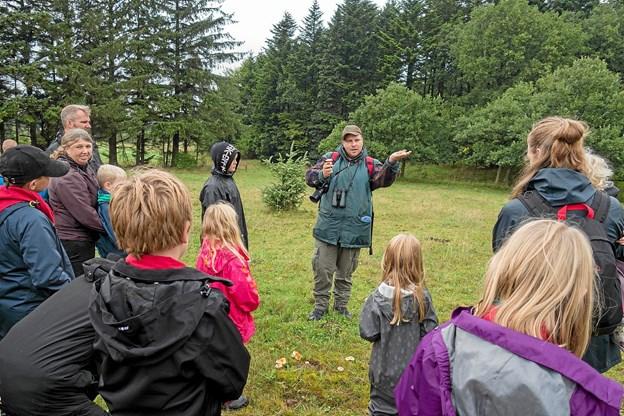 Foruden insekter kunne naturformidler Kim Fogt også fortælle mange historier om svampe. Foto: Niels Helver