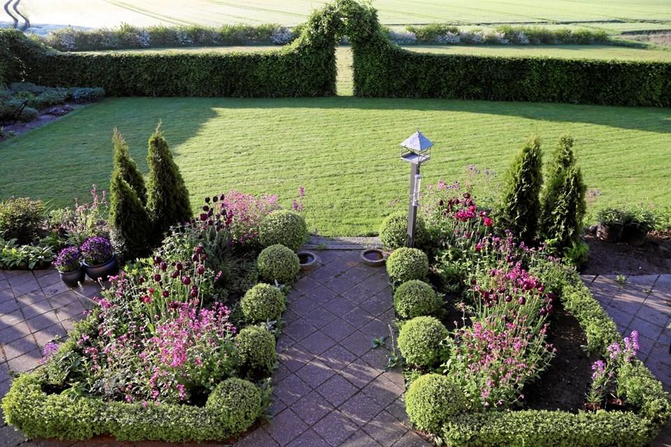 Stedsegrønne i selskab med tulipaner, stauder og græsser skaber farver i haven hele året. JEANETTE THYSEN