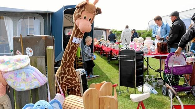 """De mange besøgende var kommer for at se giraffen og den lille blå elefant """"Bodil"""" Foto: Tommy Thomsen Tommy Thomsen"""
