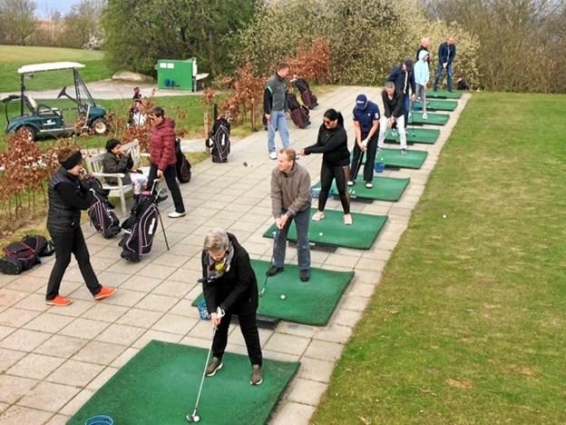 Et dusin splinternye golfspillere slår de første slag til golfbolden på Mariagerfjord Golfklubs udslagsbane. Privatfoto