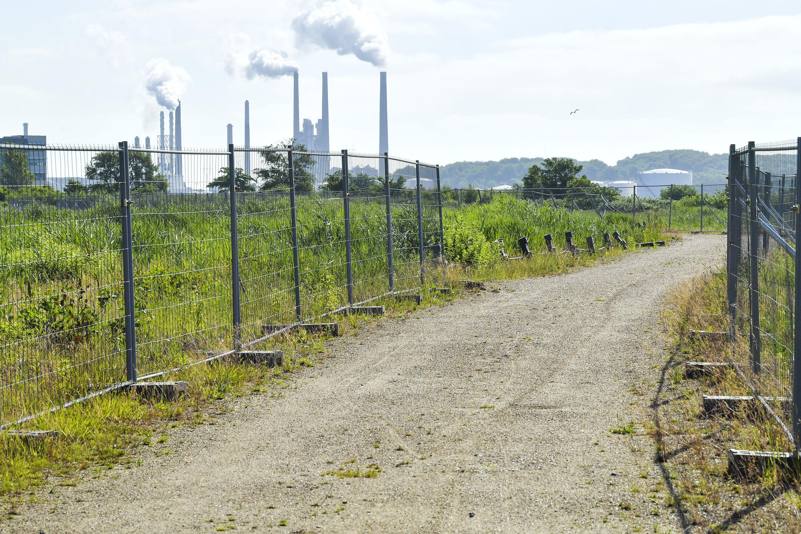 En stor del af området på Stigsborg skal forblive grønt. Arkivfoto: Michael Koch
