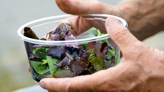 Denne her gang er emnet blandt andet madspil og hvordan der kan skabes en bæredygtig fremtid gennem vores egne madvaner. Arkivfoto: Bo Lehm Foto: Bo Lehm