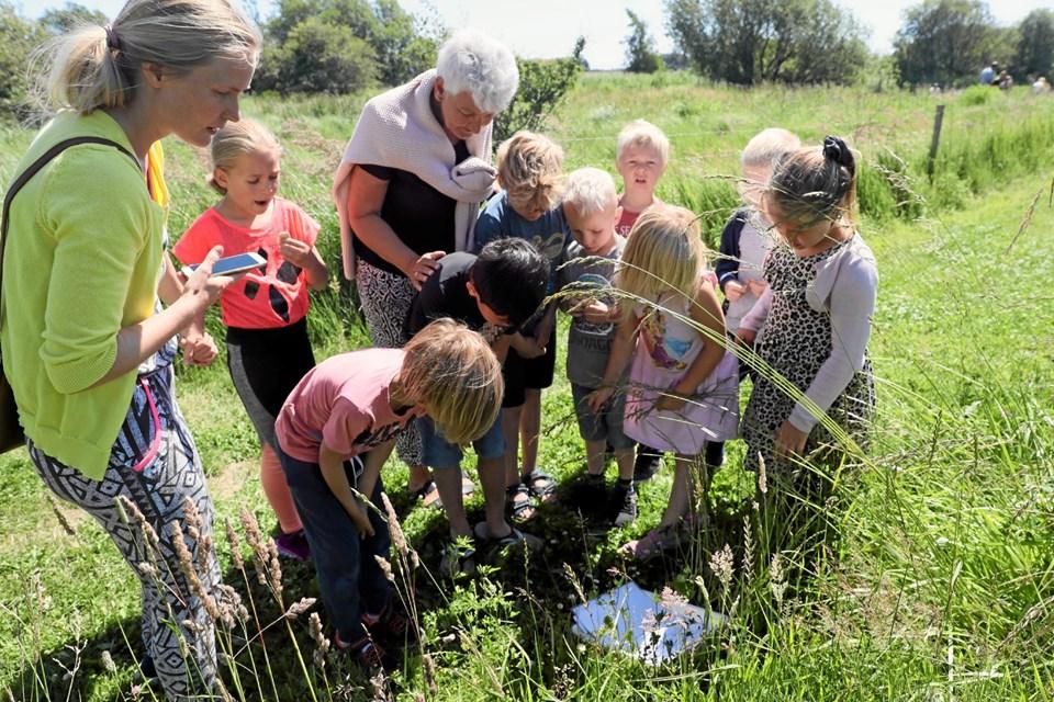 Der var stor deltagelse ved arrangementet, som er blevet en kærkommen sommertradition. Foto: Allan Mortensen Allan Mortensen