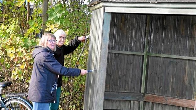 Læskuret ved busstoppestedet oppe på hovedgaden får en gang træbeskyttelse. Det er Aase Maribo (t.v.) og Birthe Agerbæk, som har gang i penslerne. Foto: Ole Torp Ole Torp