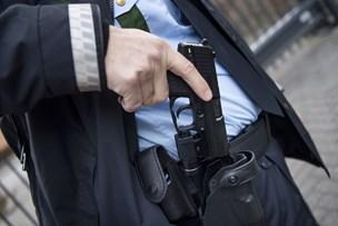 Husspektakler udviklede sig: Forsøgte at tage skarpladt pistol fra politibetjent