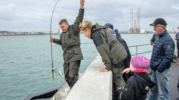 Nicheturisme er en virkelig stærk sag - og tyske lystfiskere vil sagtens kunne fristes af molefiskeri. Foto: Peter Broen