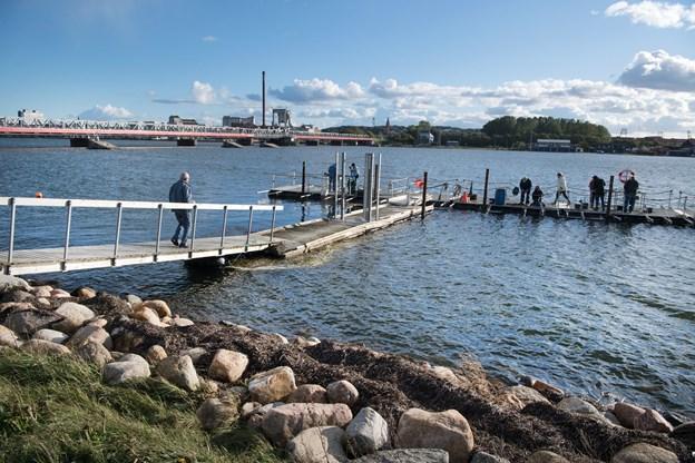Den kærkomne pengegave fra Nordea-fonden gør det nu muligt at anskaffe en spritny bådebro til Aalborg Fjordhave, så medlemmerne ikke behøver at frygte for at falde i fjorden, når de skal gå ud til flåderne. Arkivfoto: Hans Ravn