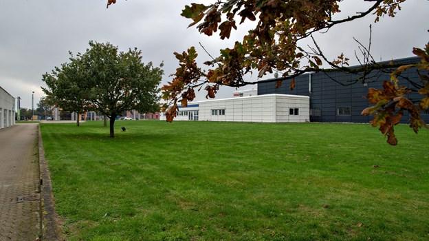 Det er på græsarealet mellem NORDJYSKE Medier og Garant, at Mads Jensen vil bygge nyt for at flytte Supervin fra Skagensvej til Frederikshavnsvej ... men der kan godt gå et par år, før det bliver en realitet.Foto: Kurt Bering