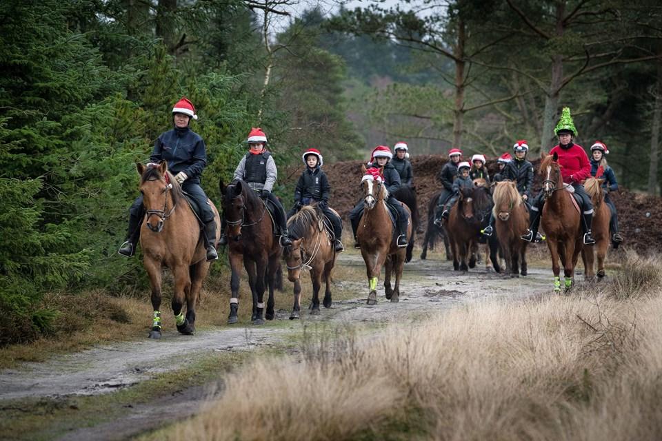 """13. december lavede Mette Åkerstrøm sit opslag på Facebook-siden """"Rideture i Nationalpark Thy"""" om juletur i Tvorup Plantage 3. juledag. Turen foregår i roligt tempo, så børn og voksne kan være med. Adgangsbilletten til den offentlige tur er en nissehue. Mette har stillet tre af sine heste til rådighed for de piger, der plejer at hjælpe til med hestene derhjemme i stalden. Hun rider selv forrest på Bastian."""