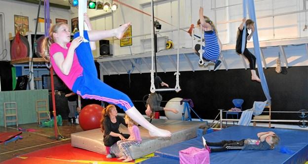 Cirkus Tordenskrald i Frederikshavn er primus motor for arrangementet.