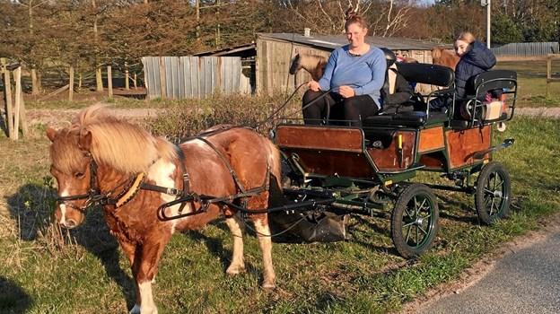 Der er gratis hestevognskørsel.Privatfoto