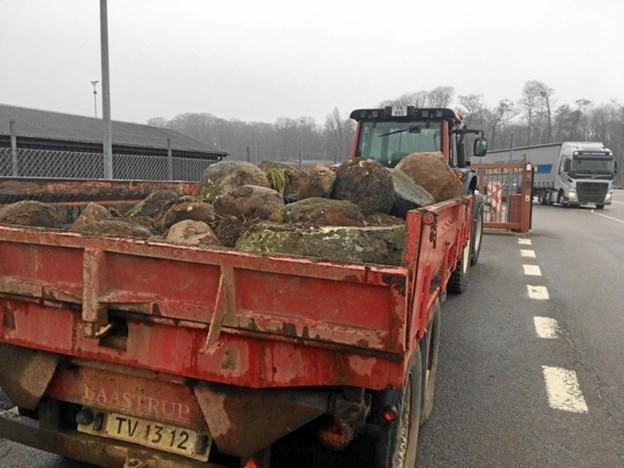 Endnu nogle forhindringer er ryddet af vejen. Foto: Fredrikshavn Kommune
