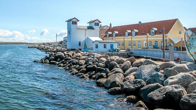 Kunstneren Birthe Kjærsgaard har atelier i det gamle fiskehus ved fyret og den lille havn. Her er nu opstillet et telt, hvor kurset afholdes. Foto: Mogens Lynge Mogens Lynge