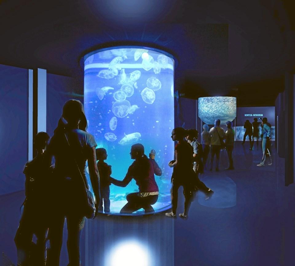 Foto: Nordsøen Oceanarium