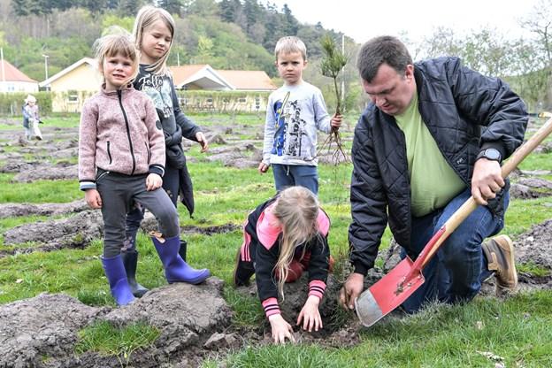 Pædagogmedhjælper Mathias Jensen havde nok at se til, da børnene ville hjælpe med at grave de træer ned til børneskoven. Foto: Bent Bach BENT BACH