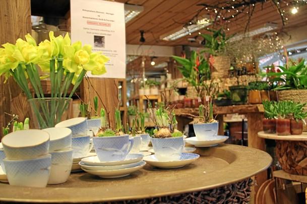 Butikker i aktion for udsatte piger: dekorerer kongeligt porcelæn med blomster