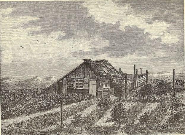 Helt op i nyere tid ser man ret så alternative boformer. Gartner og avlsbruger Johannes Salomonsen (1839-1919) kom til Skagen fra Vejlekanten i 1880, og bosatte sig først ude på heden nord for byen. Her blev de fleste af hans mange børn sat i verden. Senere flyttede familien ind til Sct. Laurentii Vej 141. F. Sehested tegnede Salomonsens hytte, og illustrationen blev bragt i Illustreret Tidende i 1884.
