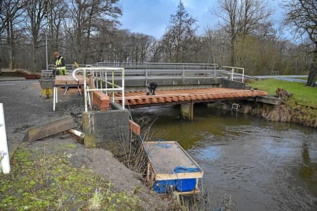 Hele konstruktionen bygges ovenpå den gamle smalle stemmebro, der løber langs med vejbroen. Foto: Ole Iversen Ole Iversen