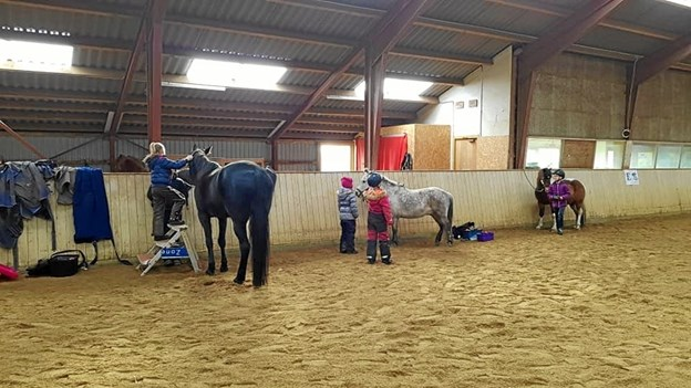 Hovedtemaet for hestehyggen i Ranum var strigling og udstyrspleje. Privatfoto