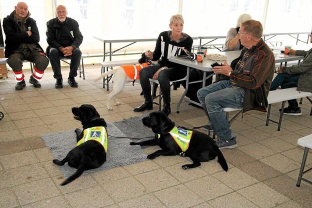 Team Førerhunde var også til stede i Blokhus. Foto: Flemming Dahl Jensen