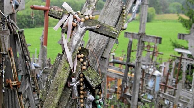 Korshøjene v. Šiauliai er et valfartssted for katolske pilgrimme og samtidigt et symbol på den litauiske modstand mod sovjetstyret. ?Foto: Louise Poulsen