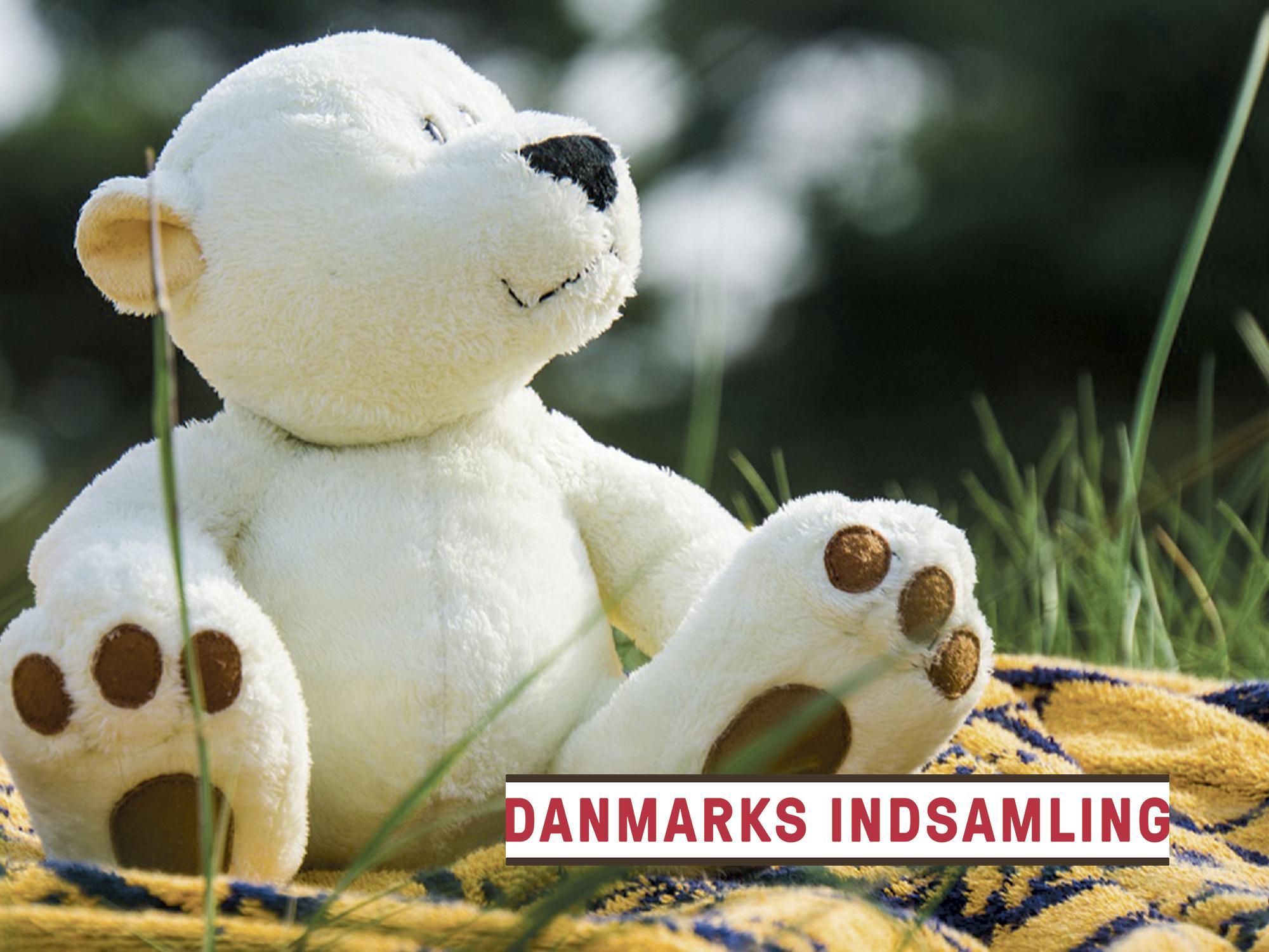 Den gamle bamse kan blive til penge til Danmarks Indsamling i Nordkraft 2. februar. PR-foto