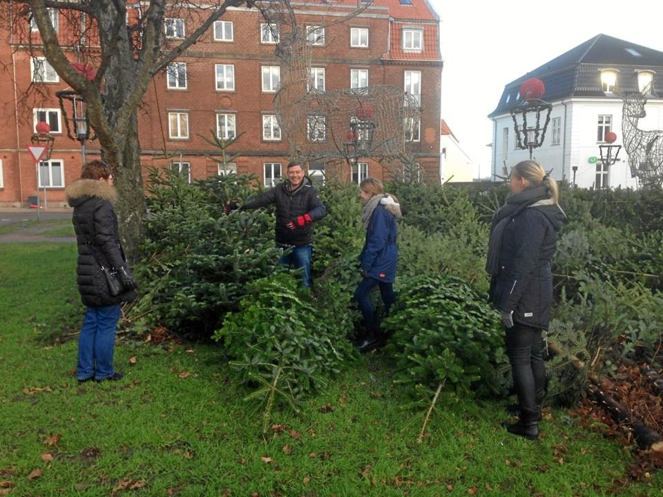 Mange forældre gav en hånd med til salget af juletræer. Privatfoto