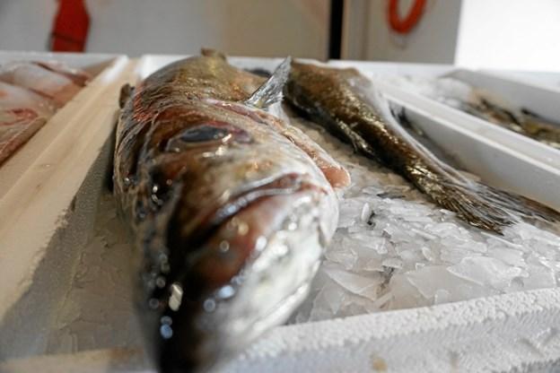 Auktionen starter kl. 11, og nogenlunde samtidigt åbner serveringen af fiskeplatter og muligheden for at købe kolde drikkevarer.