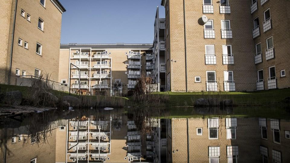 Statsministeren sagde i sin nytårstale, at det kan blive nødvendigt at rive boligblokke ned for at komme ghettoer til livs. Gadelandet i Husum er et af områderne, man kan finde på regeringens ghetto-liste. Foto: Scanpix/Asger Ladefoged/arkiv