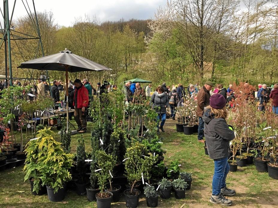 Plantemarked i landbohave