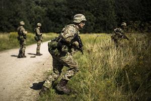 Et travlt år venter det danske forsvar
